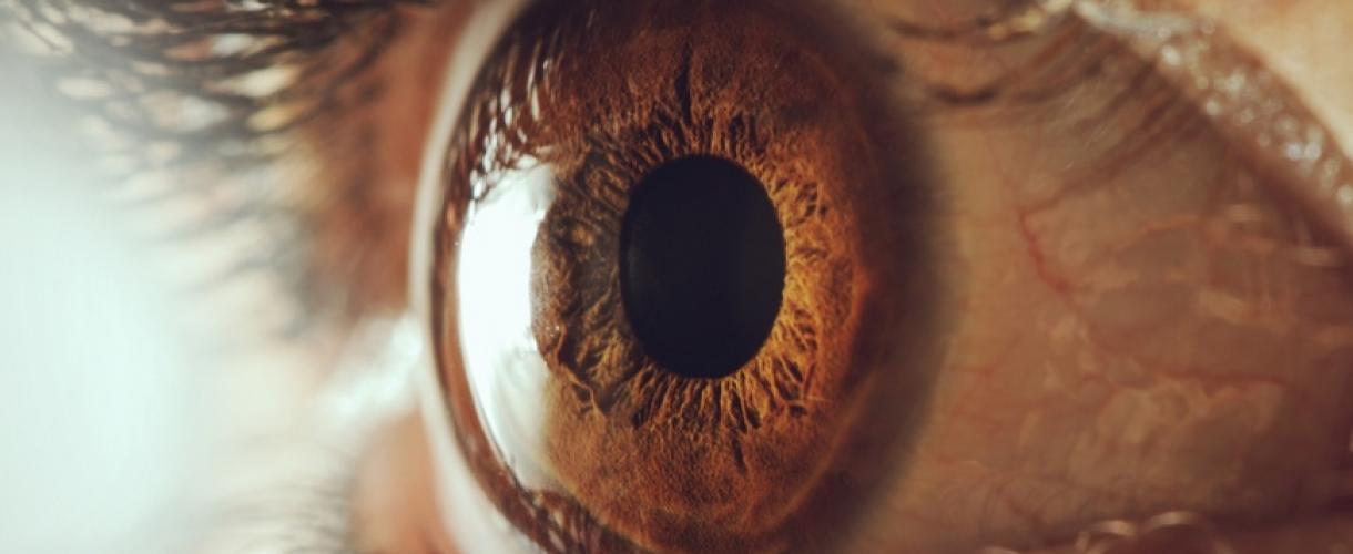 Протезирование глаза без удаления глазного яблока