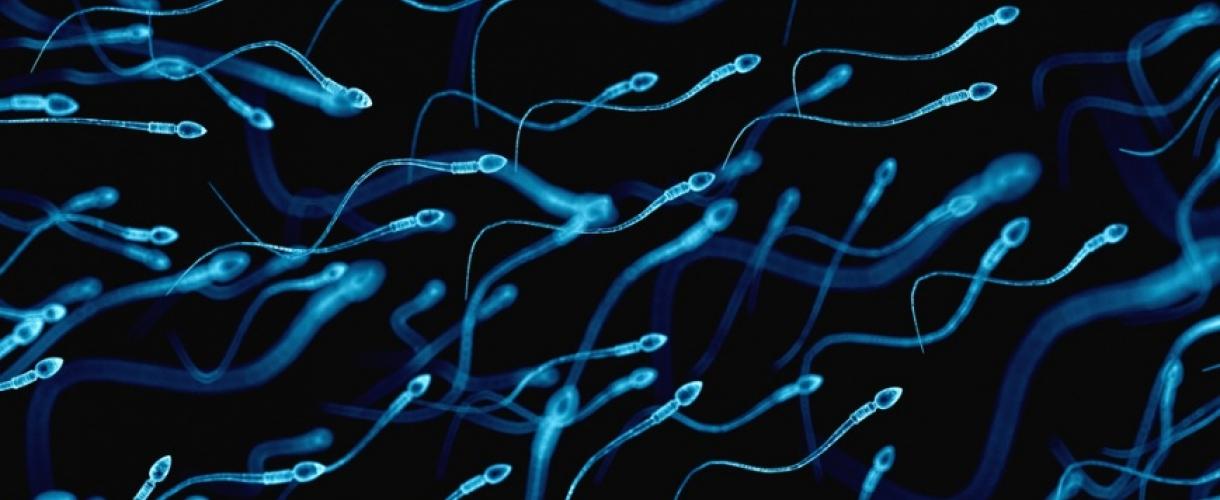 Сперма под водой стала вязкой