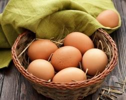Как облюбовать яйца во магазине: критерии качествественного продукта
