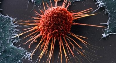 Научные достижения при лечении рака