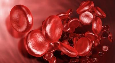 Чем можно вылечить кровоточивость дсен