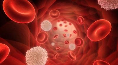 Лейкоцитоз – причины, симптомы, лечение